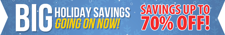 Bonus Holiday Savings!